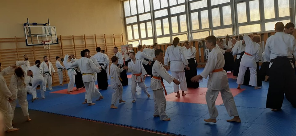 Staż Aikido Abdelghani Ghiatt 8 dan Lublin 2019 (3)